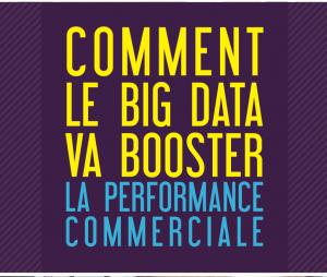 ZEBAZ_Livre_Blanc-_Big-Data-performance-commerciale_pdf__page_1_sur_42_
