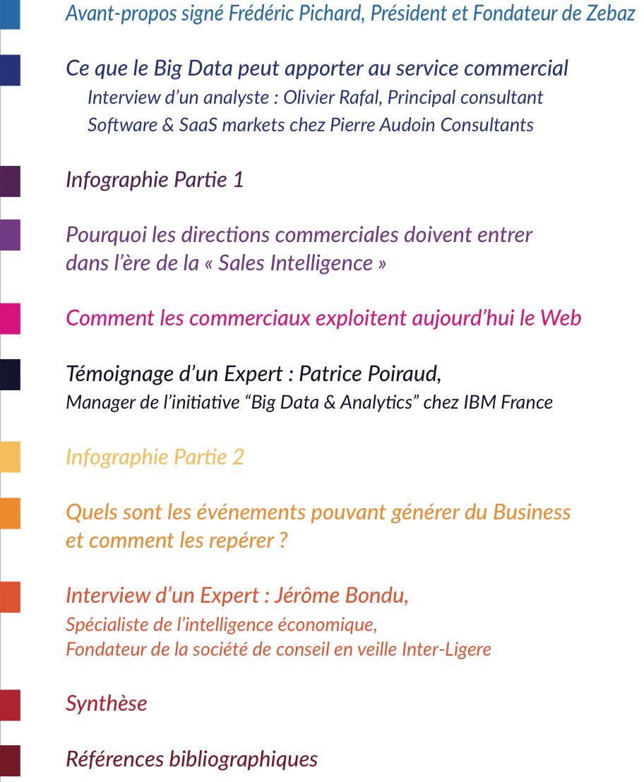 ZEBAZ_Livre_Blanc-_Big-Data-performance-commerciale_sommaire_pdf